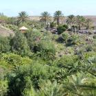 Vista parcial de jardín botánico