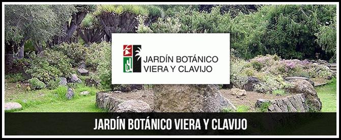Relaciones con otros jardines bot nicos jard n bot nico for Jardin botanico viera y clavijo